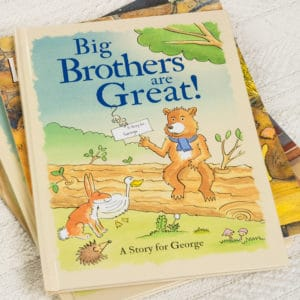 big brothers book