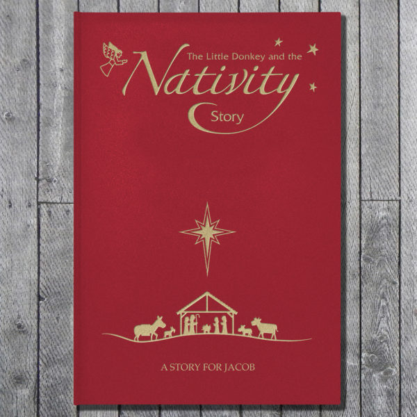nativity story book