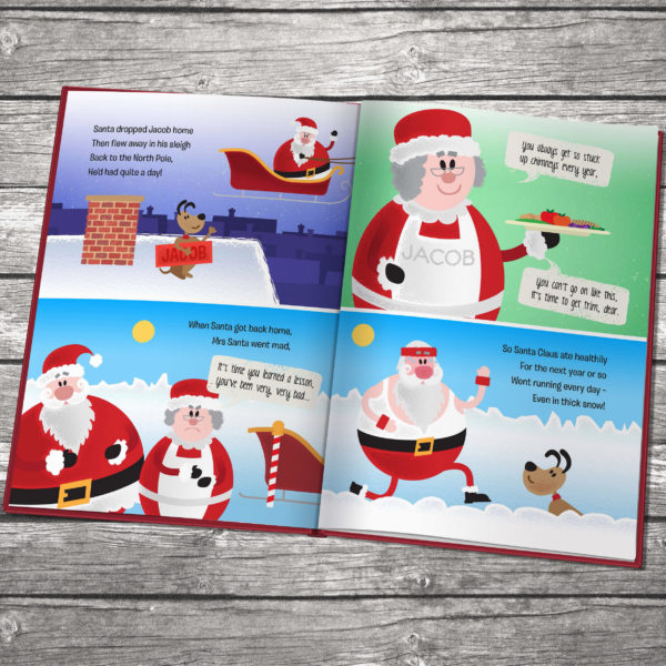 santa got stuck book