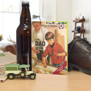 ladybird dad book