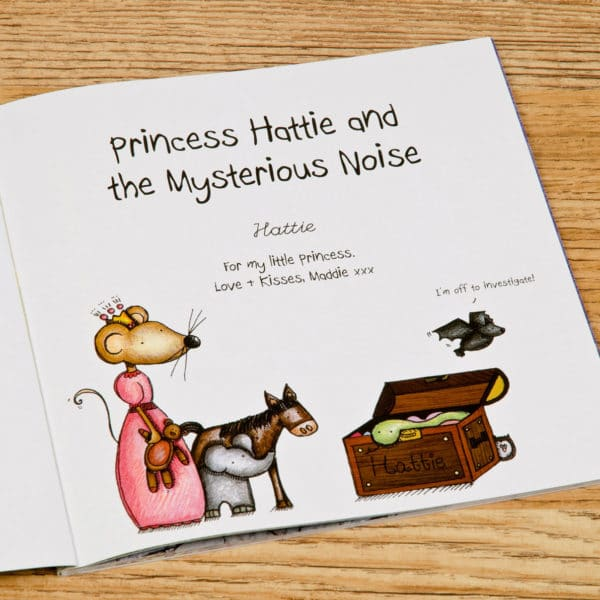 Princess and the Mysterious Noise book
