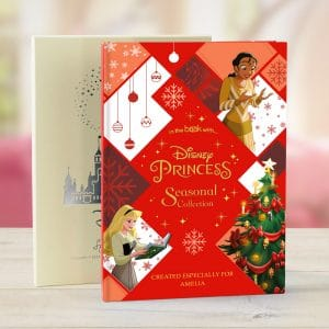 disney princesses seasonal collection book