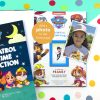 paw patrol book collection