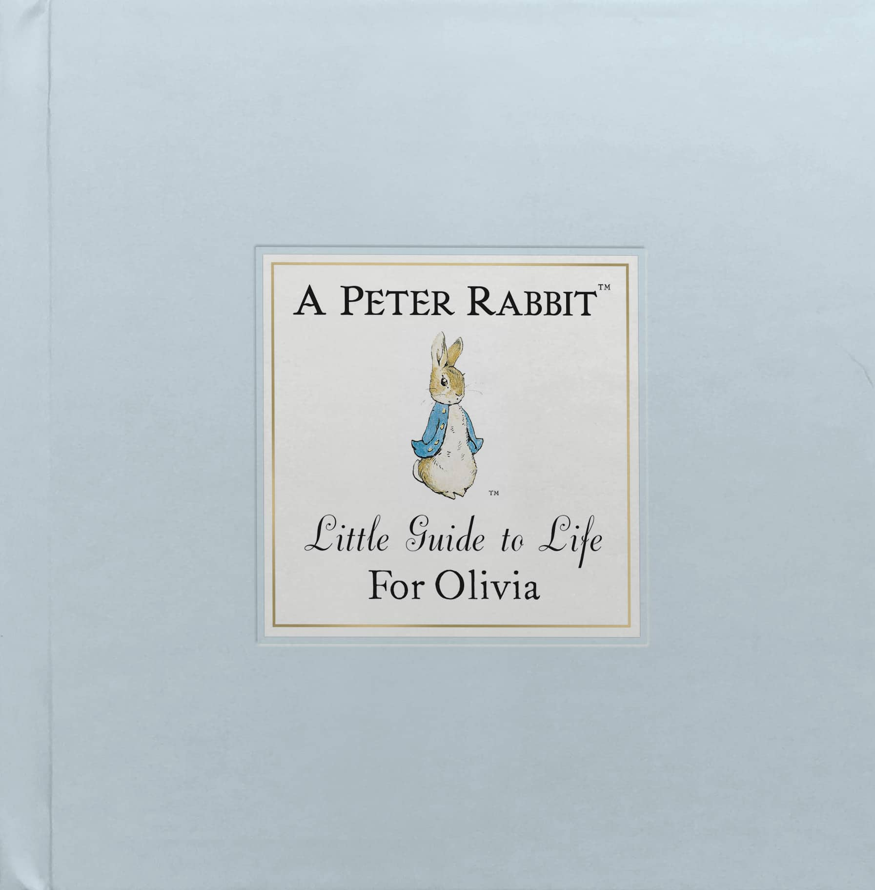 peter rabbit guide to life book